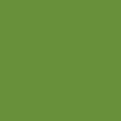 Light Olive / Avocado