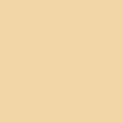 Apricot Pigment