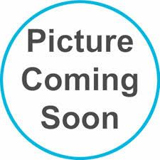 LJ12E - Ladies Plain Polo Shirt Gorse