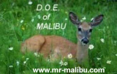 DOE of Malibu
