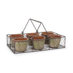 Moss Pot in Basket - Six Pots
