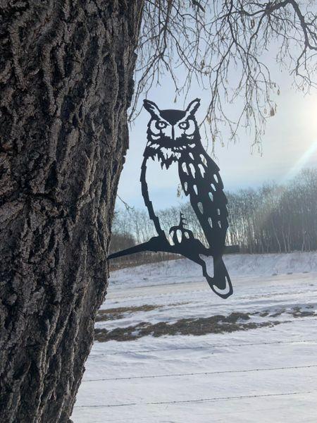 Owl Steel Bird