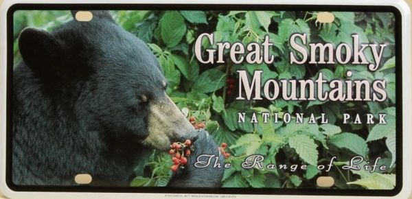 "Car Tag - ""Great Smoky Mountains National Park - the Range of Life"" - Black Bear"
