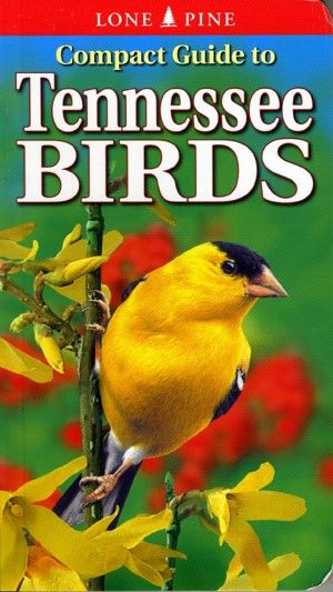 Book - Compact Guide to Tennessee Birds by Michael Roedel & Gregory Kennedy