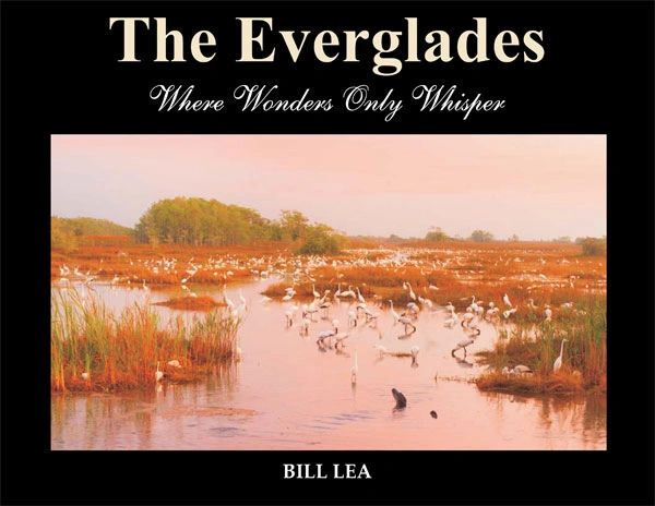 Book - The Everglades, Where Wonders Only Whisper by Bill Lea