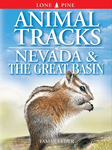 Book - Animal Tracks of Nevada and the Great Basin by Tamara Eder