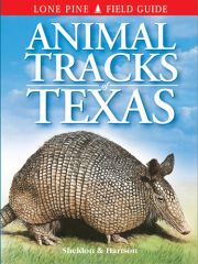 Book - Animal Tracks of Texas by Ian Sheldon & Tamara Hartson