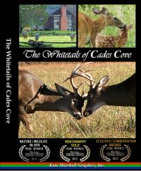A DVD - The Whitetails of Cades Cove
