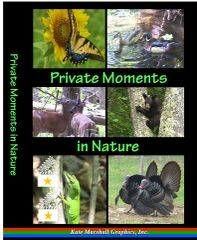 A DVD - Private Moments in Nature - NEW!