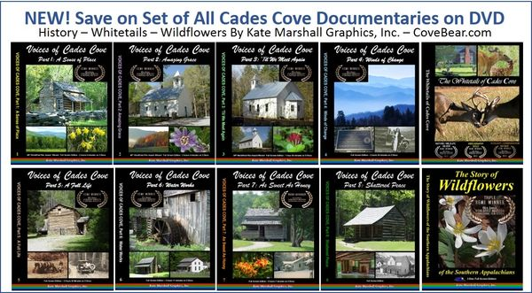 A DVD SET - NEW! Cades Cove Set of 10 NOW ON SALE!