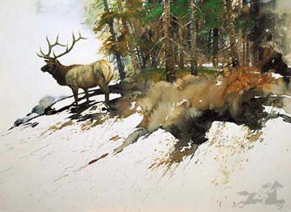 High Elk Country by Morton Solberg