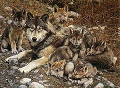 Den Mother Wolf Family by Carl Brenders