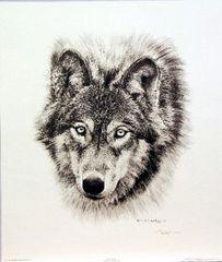 Den Mother, Pencil Sketch by Carl Brenders