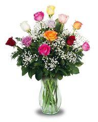 Dozen Assorted Roses in vase