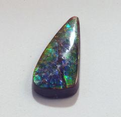 CAM-0004; Ammolite, Canada, Untreated