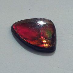 CAM-0005; Ammolite, Canada, Untreated