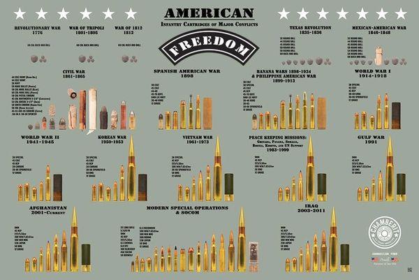 AMERICAN FREEDOM - Cartridge Poster
