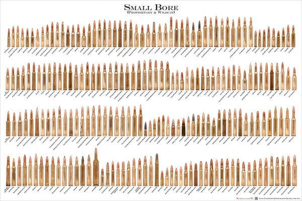 "SMALL BORE Ammunition Cartridge Poster - 24"" x 36"""