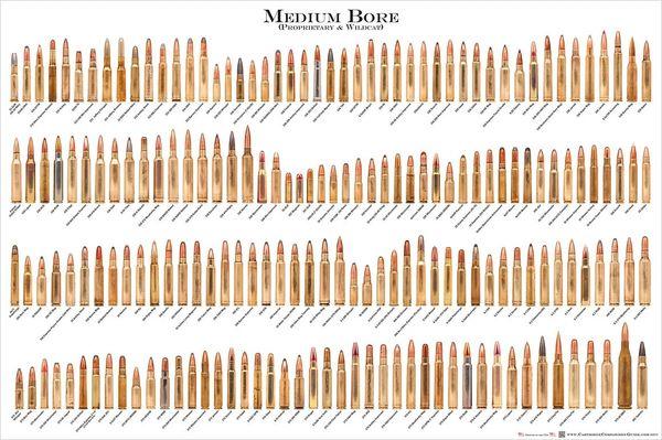 "MEDIUM BORE Ammunition Cartridge Poster - 24"" x 36"""