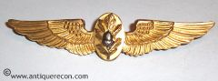 US NAVY FLIGHT SURGEON WING - 2nd PATTERN