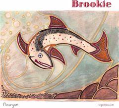 """""""Brookie"""" Brook Trout Art Shirt"""