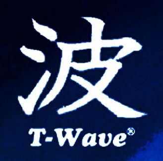 TSUNAMI WAVE CLEAN