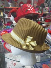 Brown and Beige Fedora