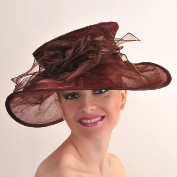 Brown Organza Hat #3605