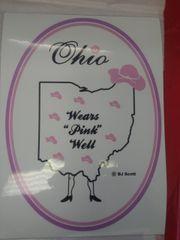 Pink Ohio 2 Window Cling PO2