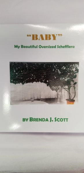 """Baby"" My Beautiful Oversized Schefflera Book NEW RELEASE"