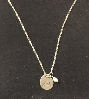 100.2 Sterling Silver Necklace