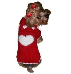 Sweater - Puppy Love Red