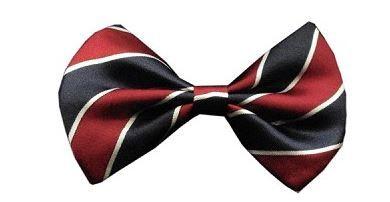 Bow Tie - Classic Stripe