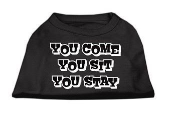 Tee Shirt - You Come