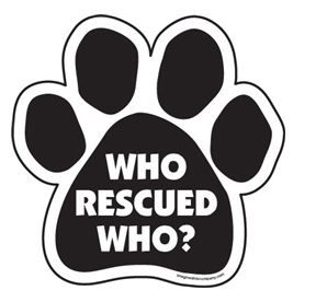 Magnet - Who Rescued Who?