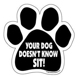 Magnet - Yor Dog Doesn't Know Sit!