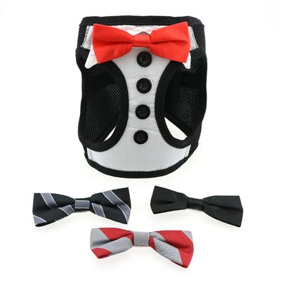 Tuxedo American River Harness with 4 Interchanging Bows