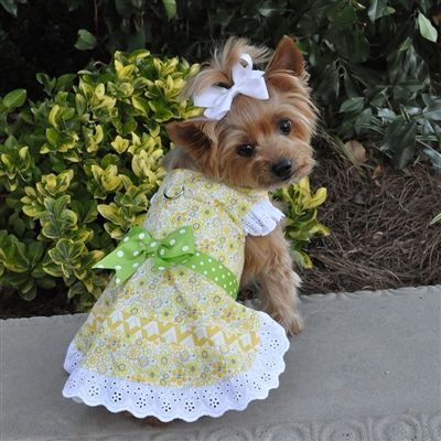 Emily Yellow Floral Harness Dress