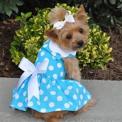 Blue Polka Dot Harness Dress