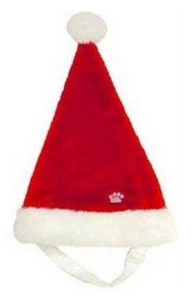 Christmas - Santa Hat
