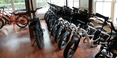 Many models and sizes of rental bikes. We will make sure that proper adjustments are made and that your bike fits you perfectly.