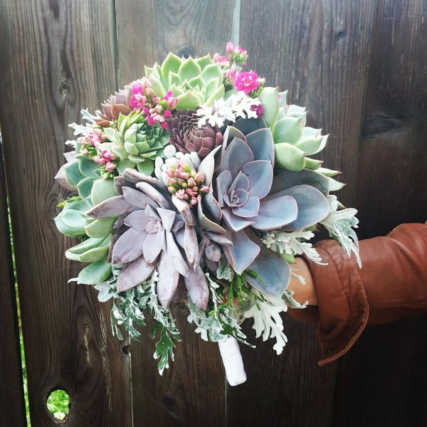 Large Succulent Bouquet