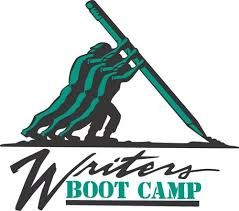 120 Day Book Boot Camp