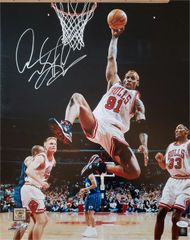 Dennis Rodman autograph 16x20, Chicago Bulls