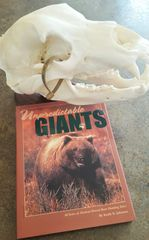 Unpredictable Giants, $30 OFF SALE, Hard Cover Book, 60 brown bear hunting adventures in Alaska