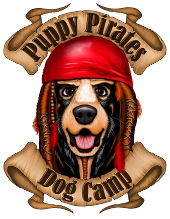 Puppy Pirates Dog Camp