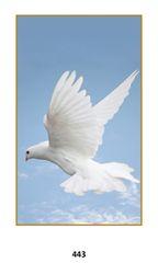 Single Memorial Card 443