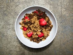 (1191C) Chocolate & Berries Cereal - IDEAL PROTEIN COMPARABLE - UNRESTRICTED - (7 Servings)NOT AVAILABLE UNTIL SEPTEMBER