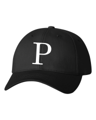 Panthers Hat