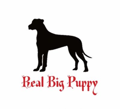 Real Big Puppy